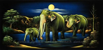 Asian Elephant under the Moonlight Hand Painting