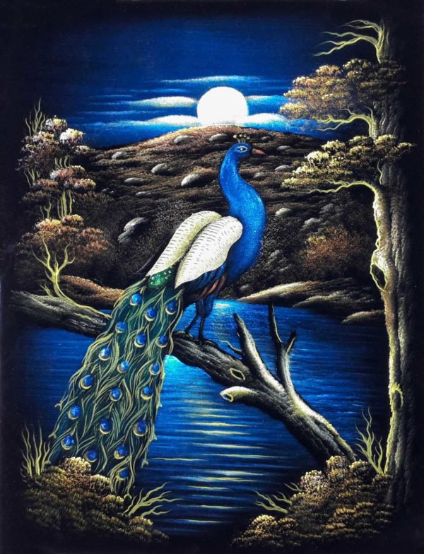 Hand Painted of a Blue Peacock Bird Velvet Wall Art